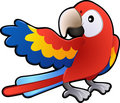 Cute Friendly Macaw Parrot Illustration