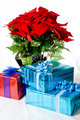Christmas presents and Poinsettia
