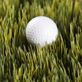 Golfball resting in grass.
