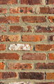 Brick Wall - Portrait Background