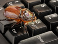 Computer bug