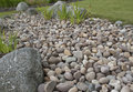 Pebbles and a rockery