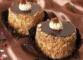 Miniature chocolate cakes