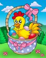 Easter basket with happy chicken