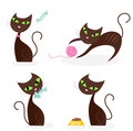 Brown cat series in various poses 1