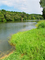 Barron River in Queensland, Australia