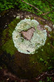 Heart on a rock