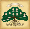 Build Your Own Family Tree