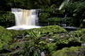 McLean Falls in Southland New Zealand