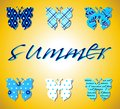 Butterflies summer pattern