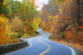 Colorful winding Autumn road