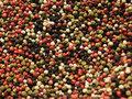 Mixed Pepper Corns