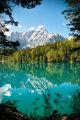 Italia - Udine - Lago di Fusine e monte Mangart with woods frame