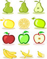 Set of vector fruits on white background