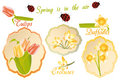 Vintage labels with spring flowers