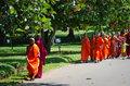 Buddhism children monks in a park