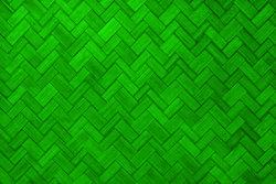 Parrot Green Paint Color