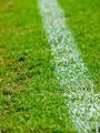 White stripe on the green soccer field 