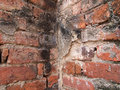 Old red grunge brick wall