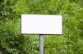 Blank sign in the woods