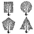 Trees of different geometric shapes.