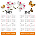 Stylish calendar with flowers and butterflies for 2013.
