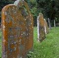 Ancient Grave Stones