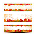 Set of Colorful Autumn Leaves Banner or Web Header