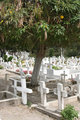 Crosses in an Ecuadorian Cemetery