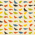 Birds pattern