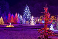 Christmas fantasy - park & forest in xmas lights