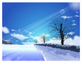 The path of the light shining in winter. Winter Season backgroun