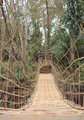Suspension bamboo bridge