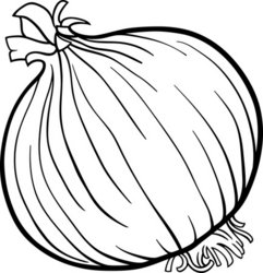 902465990-onion-vegetable-cartoon-for-coloring-book jpgOnion Clipart