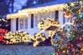 garden night scene at christmas time in the carolinas