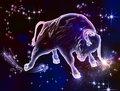 Taurus_Bull