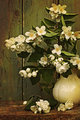 Jasmine flowers in a vase