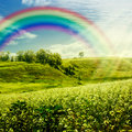 Rainbow on the meadow. Abstract natural backgrounds for your des