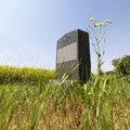 Headstone in field.