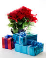 Poinsettia plant and Christmas gifts