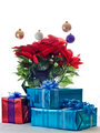 Presents and pointsetta