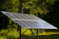 Solar Panel in a Forest Sunbeam