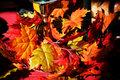 Fall table scene