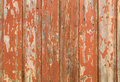 Orange flaky paint on a wooden fence.