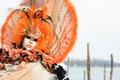 Romantic venetian mask