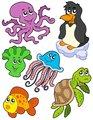 Aquatic animals collection 2