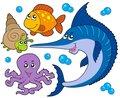 Aquatic animals collection 3