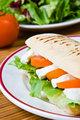 Mozzarella and tomato panini