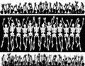 Skeleton crowd