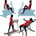 Women on gym fitness exercise machines